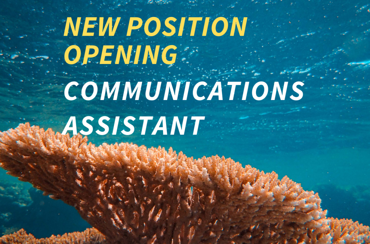 Orange coral underwater. Text: New Position Opening Communications Assistant.