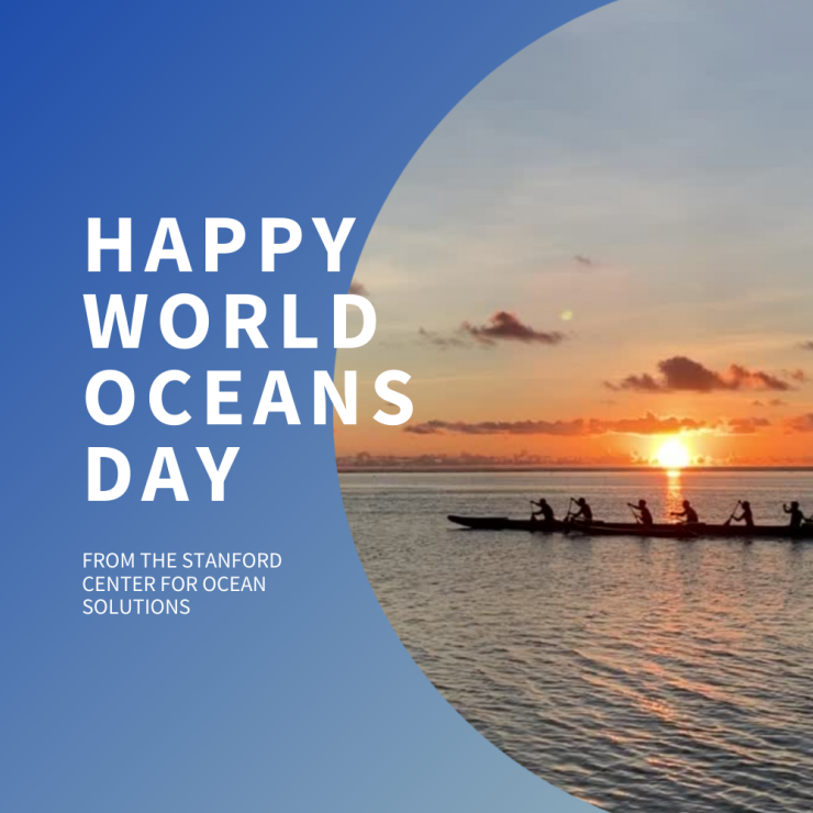 Happy World Oceans Day from the Center for Ocean Solutions