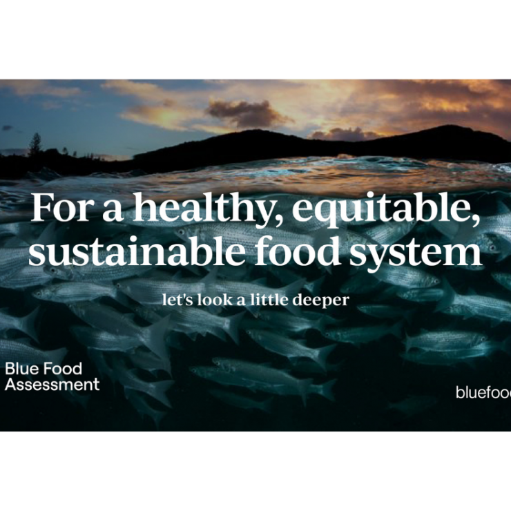 """Background: Fish swimming in the ocean. Foreground: """"For a healthy, equitable, sustainable food system."""" Blue Food Assessment. bluefood.earth"""